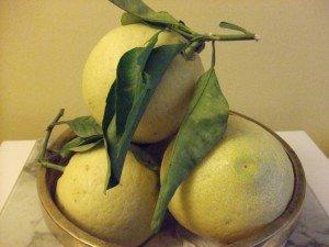 20141215 - Confiture de Cédrat - fruits