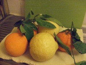 20150215 - citronette orangette - fruits