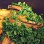 20150308 - Pastillla - Persil & coriandre ciselés