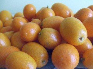 20160402 - Kumquat confit - Kumquat bio de Corse
