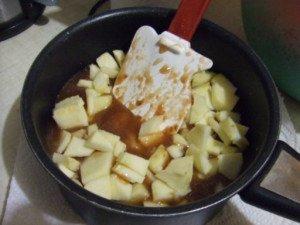 20161206 - Compote nèfle pomme et badiane - Mettre