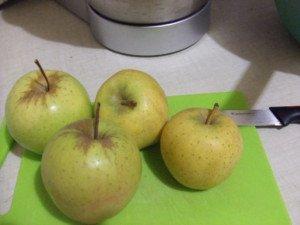 20161206 - Compote nèfle pomme et badiane - pommes