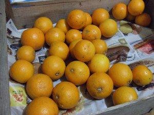 20170107 - Marmelade d'orange amère de Denise - Ingrédients